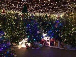 Santa's Grotto - Lights