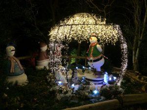 Mark Richards Education - Santa's Grotto - Snowman on Ice